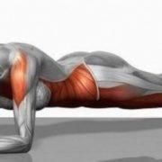 INWELLNESS: Allenamento del core e The Plank