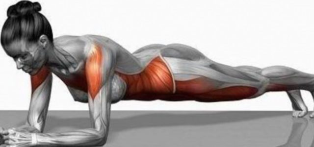 INWELLNESS: Allenamento del core e The Plank